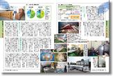 kagome leaflet